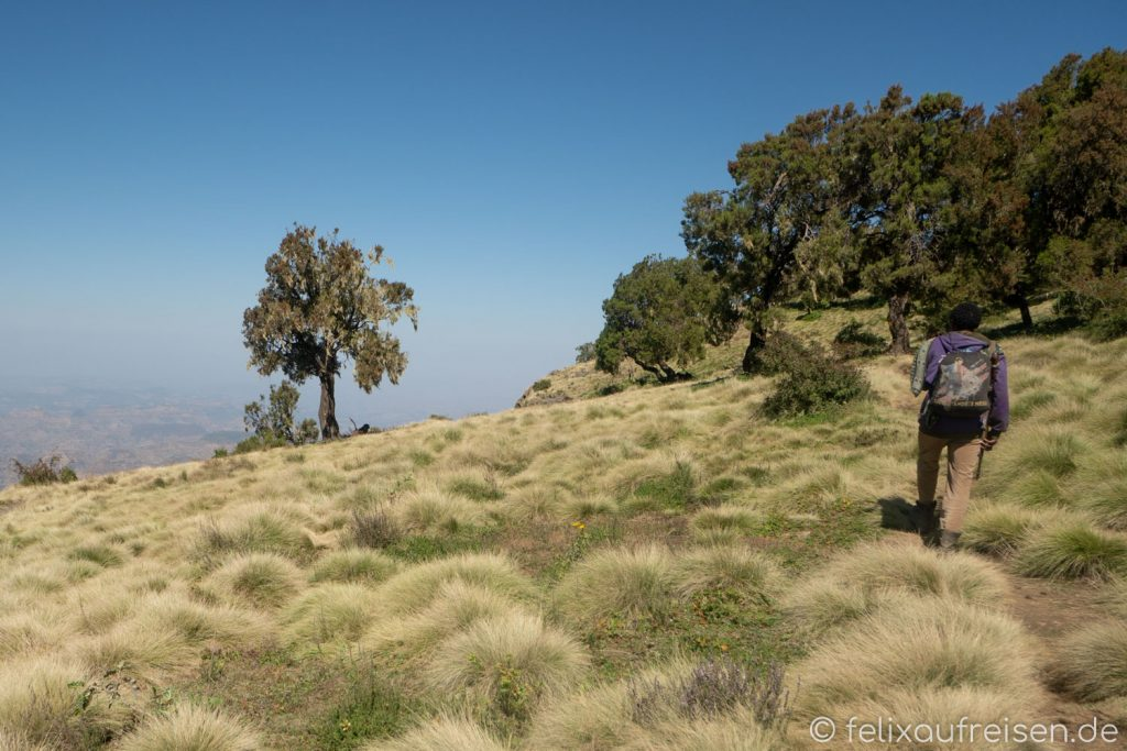 Guide im Simien Mountains Nationalpark